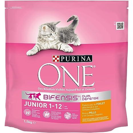 Purina ONE Bifensis Pienso para gatitos Junior Pollo y Cereales 6 x 1,5 Kg
