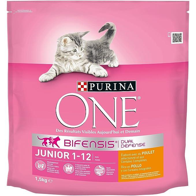 Purina ONE Bifensis Pienso para gatitos Junior Pollo y Cereales 6 x 1,5 Kg: Amazon.es: Productos para mascotas