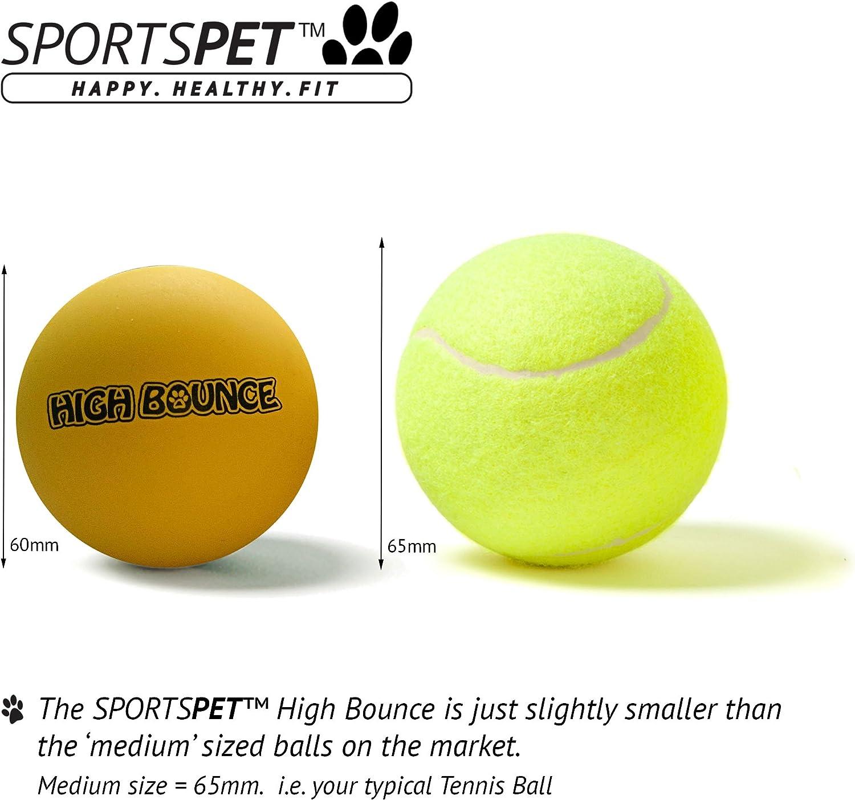 Sportspet Bolas para perro con alto rebote de goma: Amazon.es ...