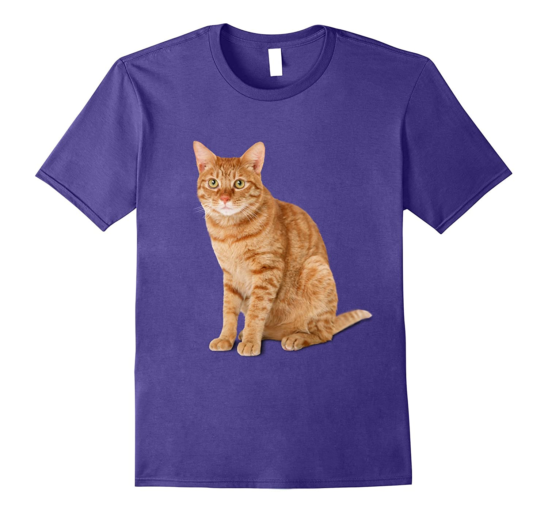 Orange Tabby Cat T Shirt Large-Tovacu
