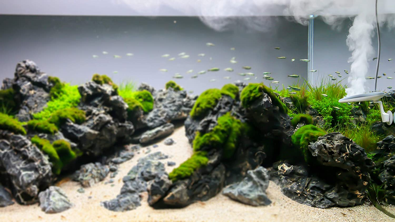 /430/Litres Aquarium Steriliser for 50/ Twin Star 2/Nano