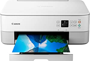 Canon TS6420 All-In-One Wireless Printer, White