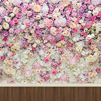 Rosa Blumen Weiß Creme Rosen Wand Wedding: Amazon.de: Kamera