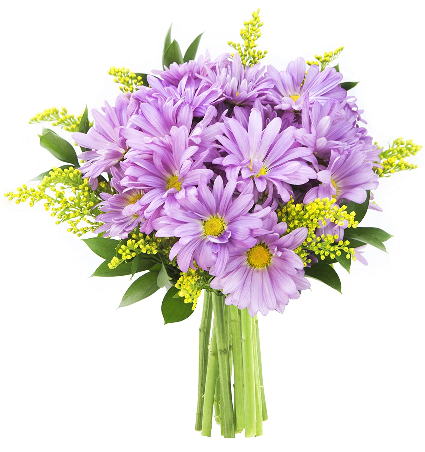 Lavender flower fields bouquet of purple daisy poms yellow solidago lavender flower fields bouquet of purple daisy poms yellow solidago aster and lush greens with vase amazon grocery gourmet food izmirmasajfo