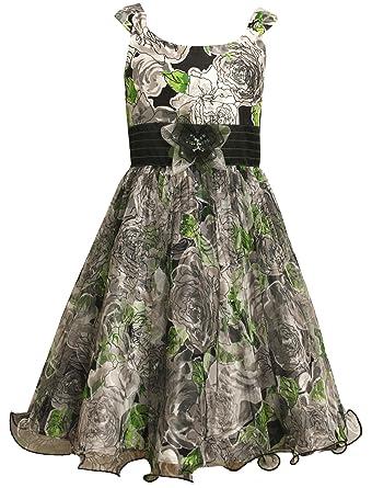 4e5847e51c1 Amazon.com: Bonnie Jean Girls Plus-Size Multi Floral Print Mesh Shantung  Dress, Multi, 12.5: Clothing