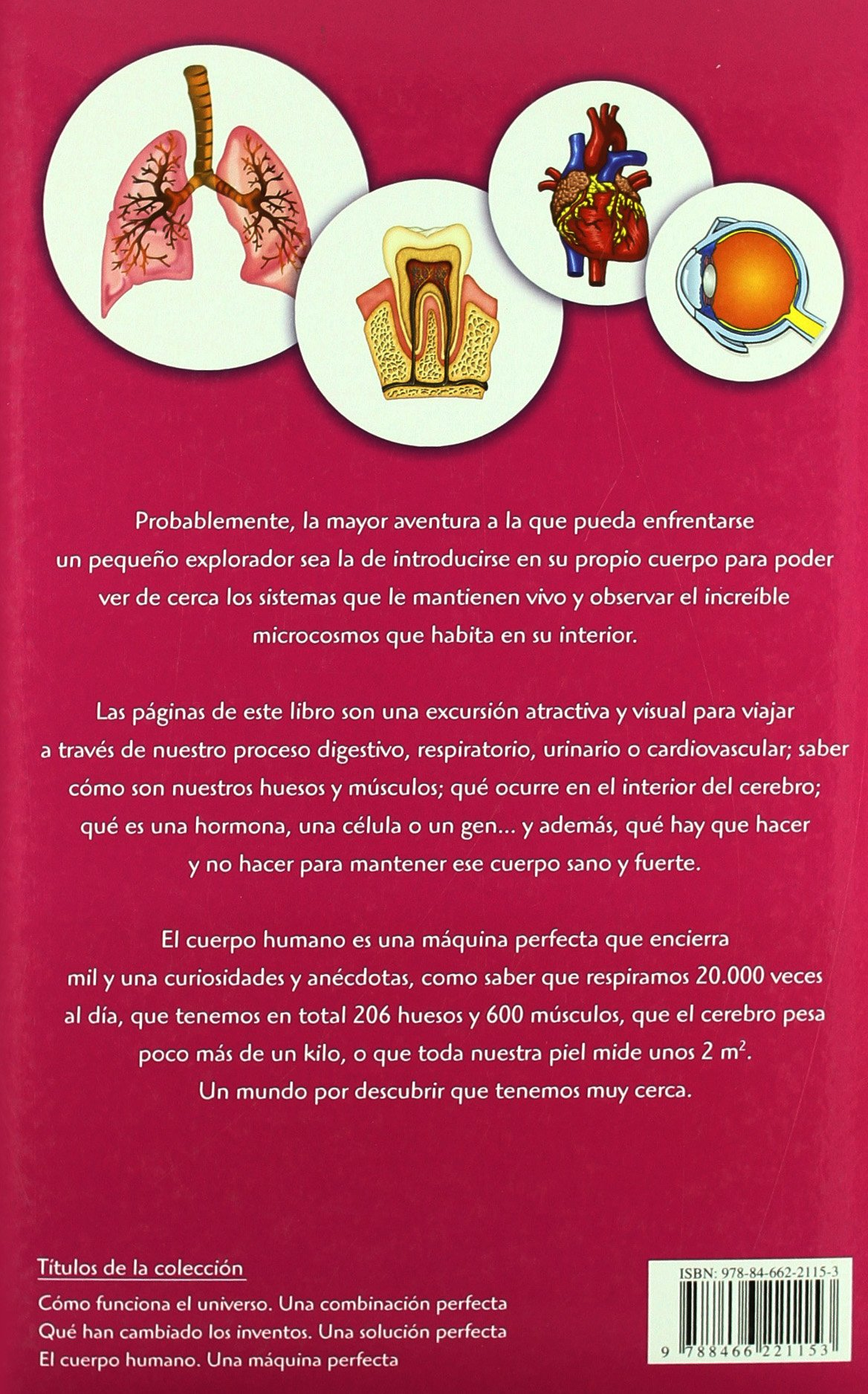 El Cuerpo Humano: Una Máquina Perfecta Exploradores del Saber: Amazon.es: Equipo Editorial: Libros