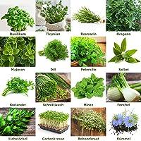 """Mezcla/Set""""Jardín de hierbas"""" 16 x 50 semillas de las hierbas más populares de Portugal / 100% natural (Sin químicos…"""
