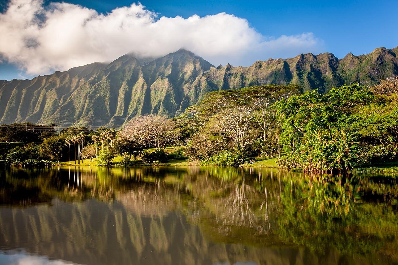 Amazon.com: Ko\'olau mountains reflecting off of a pond at Ho ...