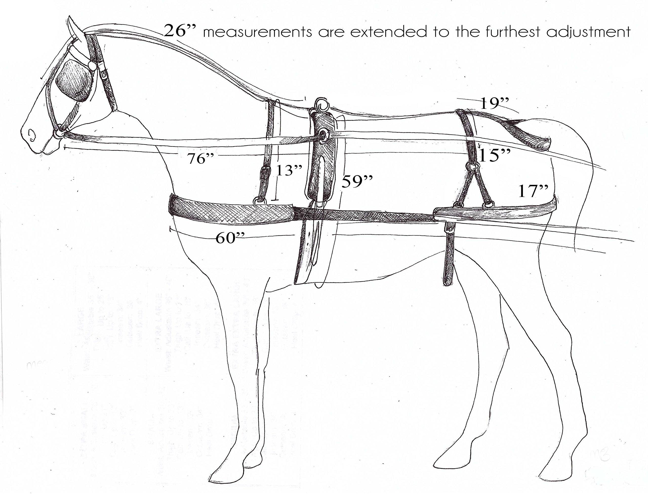 Showman Premium Mini Size Nylon Driving Harness Meant for Heavy Use
