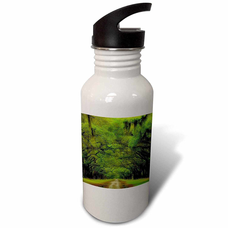 21 oz 3D Rose wb/_230559/_2 Flip Straw Water Bottle