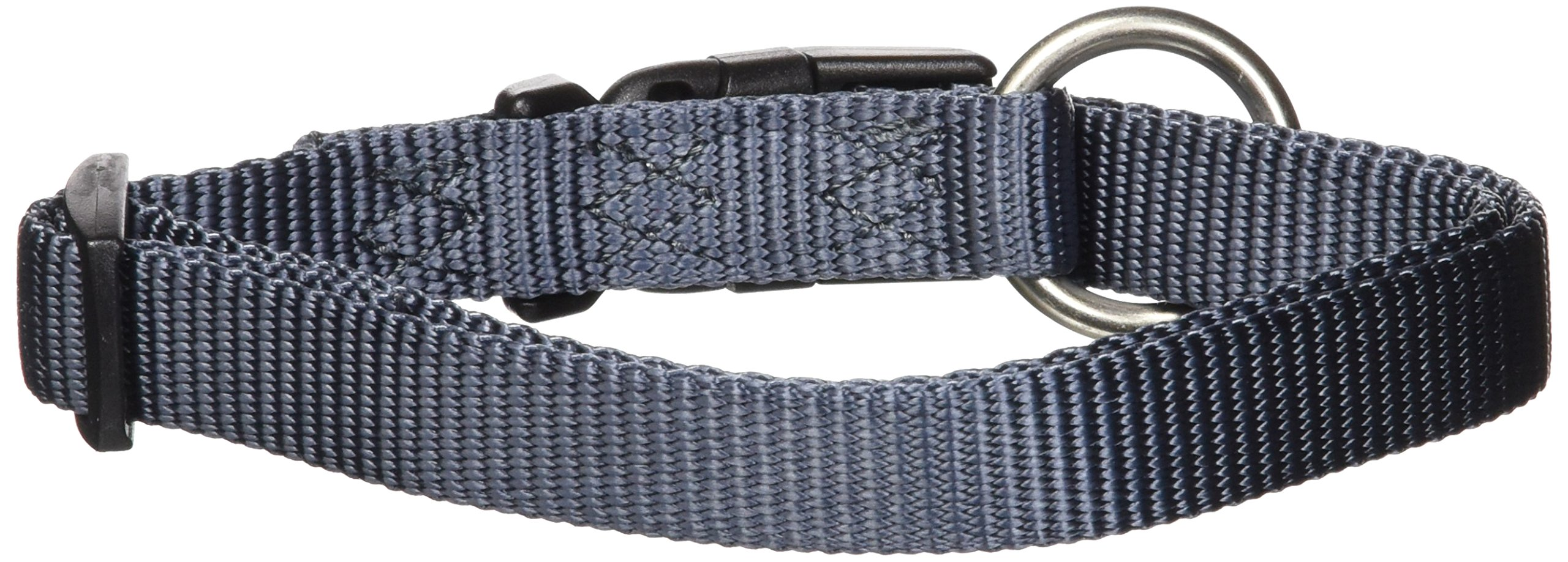 Hamilton 5/8-Inch Adjustable Dog Collar Fits 12-Inch to 18-Inch with Brushed Hardware Ring, Small, Graphite