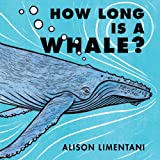 How Long Is a Whale? (Wild Facts & Amazing Math)