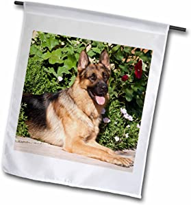 "3dRose fl_140430_1""A German Shepherd Dog by Greenery - Zandria Muench Beraldo Garden Flag, 12 x 18"