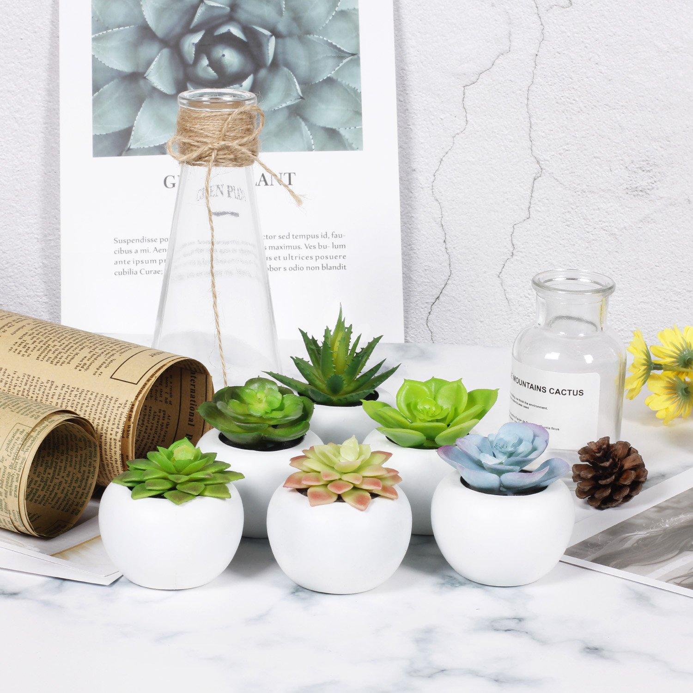 Amazon.com: EPCTEK Pack of 6 Mini Different Succulents Artificial ...