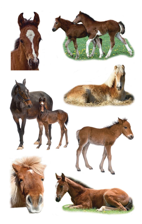 Avery Zweckform 53144 Adesivi per bambini unicorni 18 Aufkleber bunt
