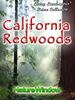 Living Landscapes California Redwoods