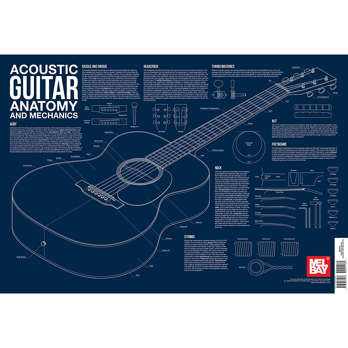 Acoustic Guitar Anatomy And Mechanics Wall Chart Charlie Lee