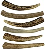 """WhiteTail Naturals 6 Pack- Small 4""""-5"""" All Natural Deer Antler Dog Chews"""