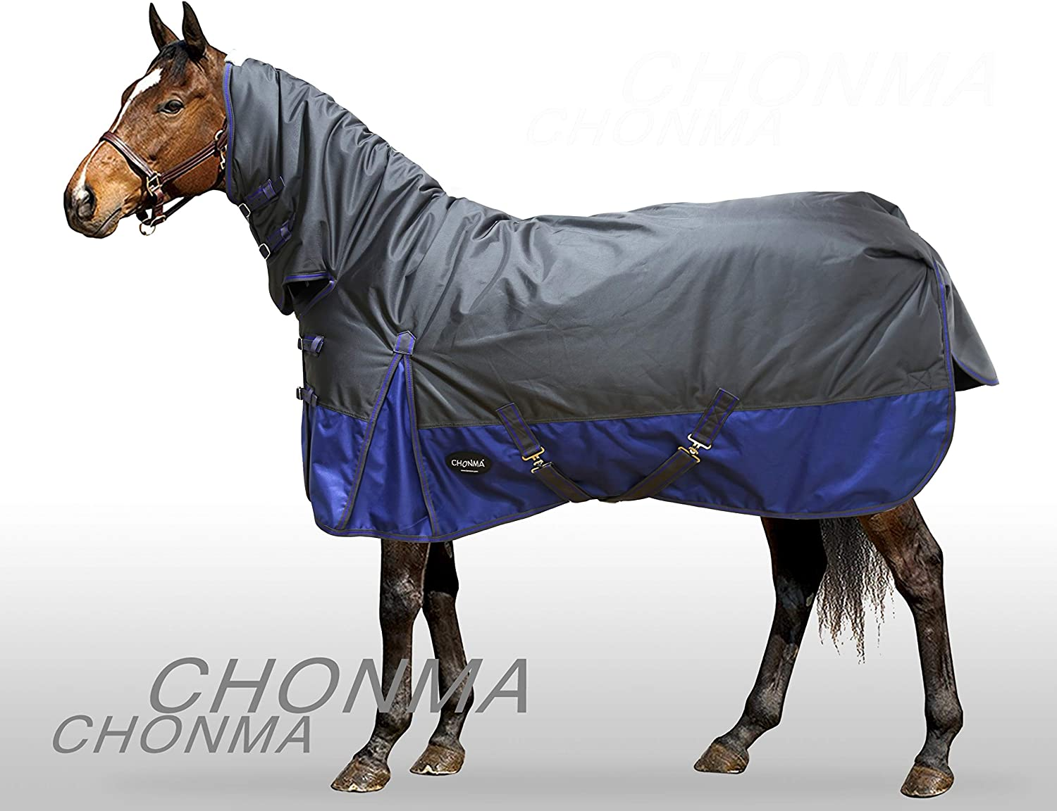 CHONMA 2520D 280G Winter Waterproof Green Fixed Neck Combo Turnout Rugs Horse Blanket