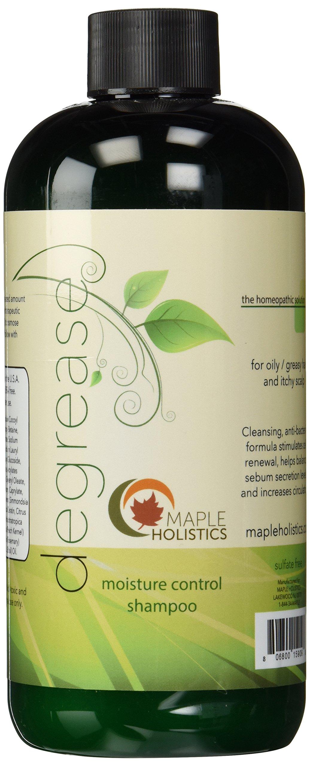 Amazon.com : Natural Oily Hair Shampoo with Organic
