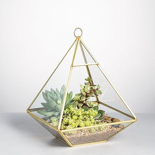 5.9 x 5.9 x 7.87 inches Gold Irregular Copper Flower Pot Pyramid Vertical Metal Glass Geometric Wall Hanging Terrarium Brass Tabletop Succulent Air Plants Holder Planter Fern Moss Box Display Vase