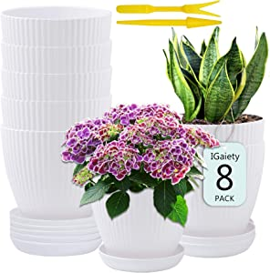 6 Inch Plastic Planters Gardening Planter Pot Indoor Flower Plant Pots for Plants Flowers Succulent Cactus Herbs Garden Office Indoor and Outdoor Decoration with Saucer Drainage Holes White Set of 8