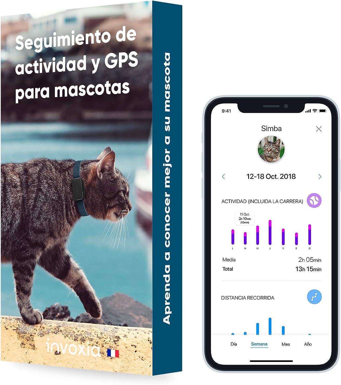 Collar rastreador para gatos con GPS