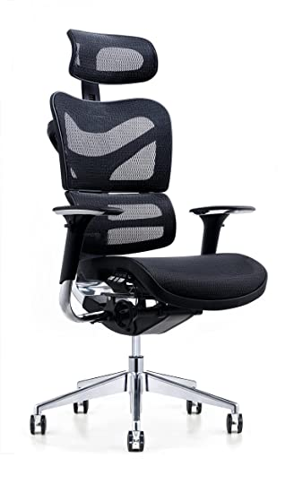 Amazon.com : Poly and Bark Inverness Ergonomic Office Chair ...