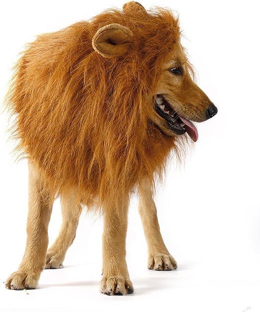 Peluca de león para disfraz de perro, de E-JIAEN: Amazon.es: Productos para mascotas