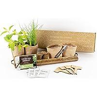 Kit Cultivo Vintage de Hierbas Aromaticas y Culinarias (Cebollino, Orégano, Menta y Salvia) - Semillas 100% Orgánicas de…