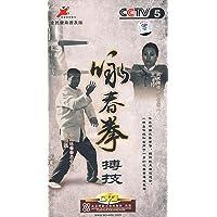 咏春拳搏技(2DVD)