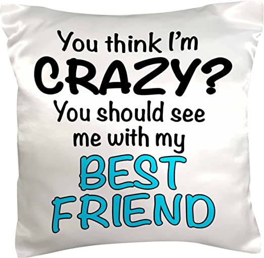 16 x 16 3dRose pc/_163922/_1 You Think Im Crazy You Should See Me with My Best Friend Turquoise Pillow Case