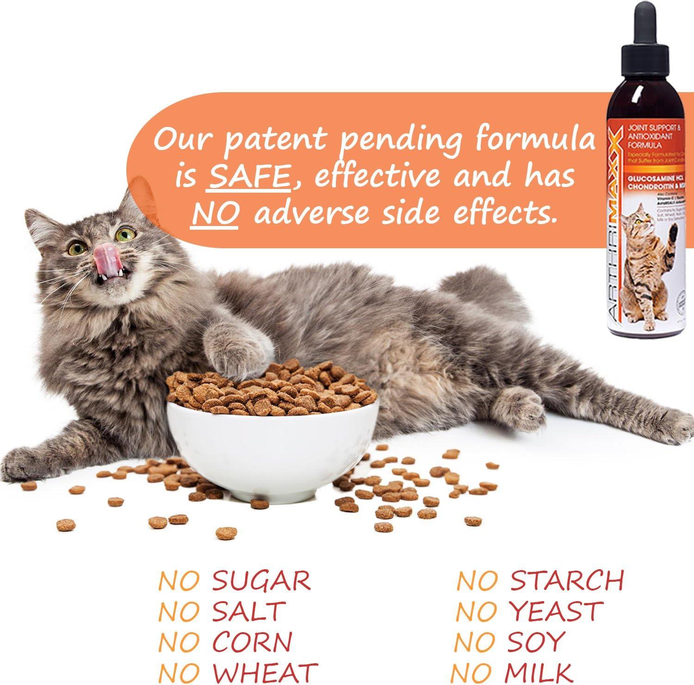 Arthrimaxx Wellness Supplment And Liquid Joint Protection For Cats 6 Oz Bottle Amazon Ca Pet Supplies