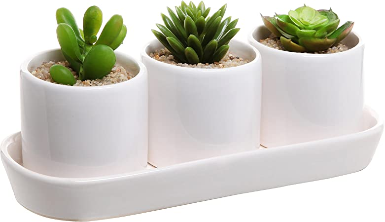 Amazon Com White Ceramic Contemporary Design Succulent Plant