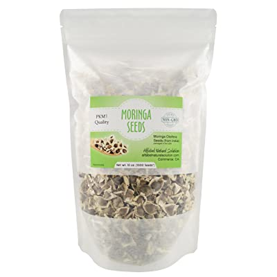 Moringa Oleifera Seeds Non-GMO PKM1 Premium Quality - Organically Grown - 10 oz. | 283 GMS (1000 Seeds Approximately) Resealable Stand Up Pouch : Garden & Outdoor