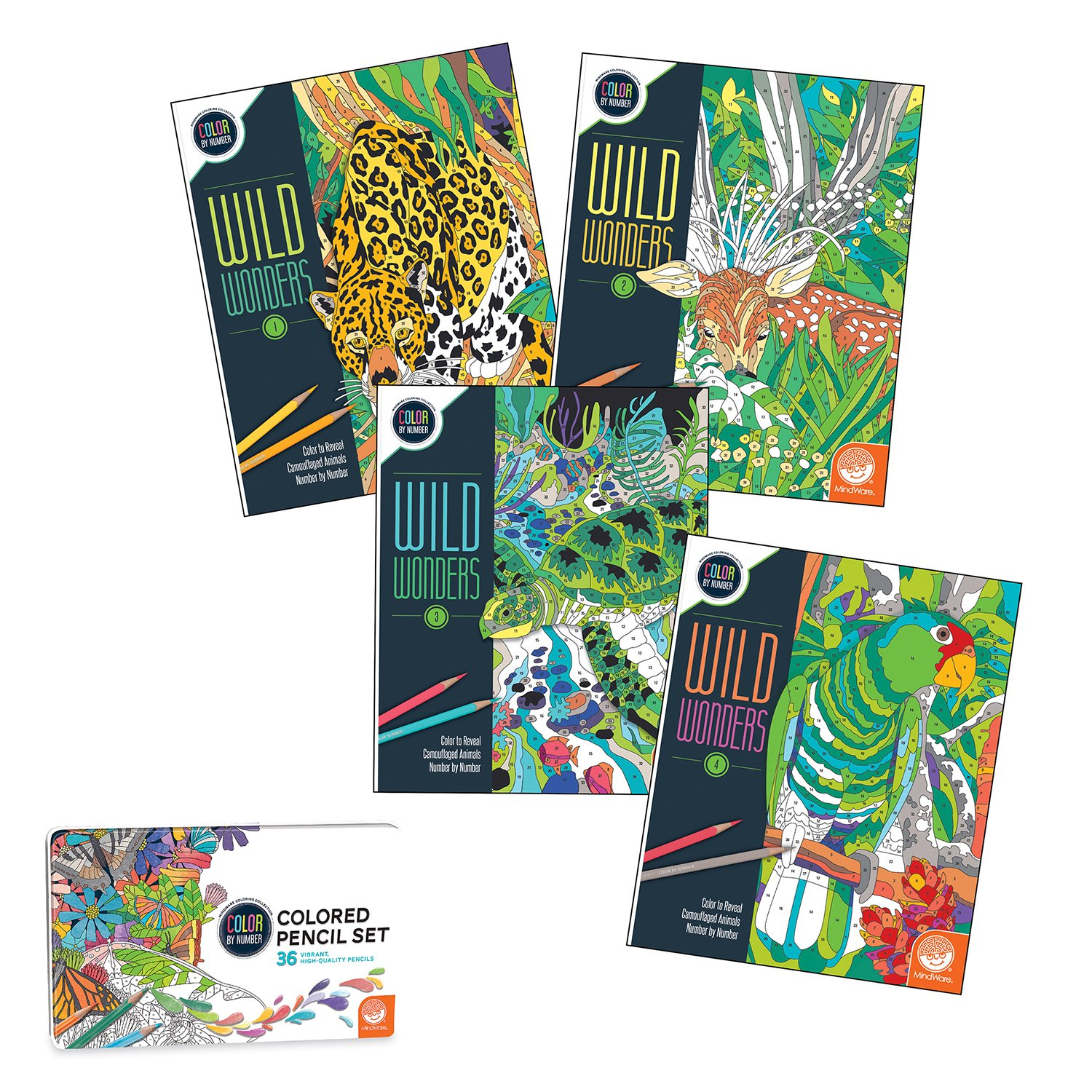 Amazon.com: Wild Wonders Color By Number Book Set: Toys & Games