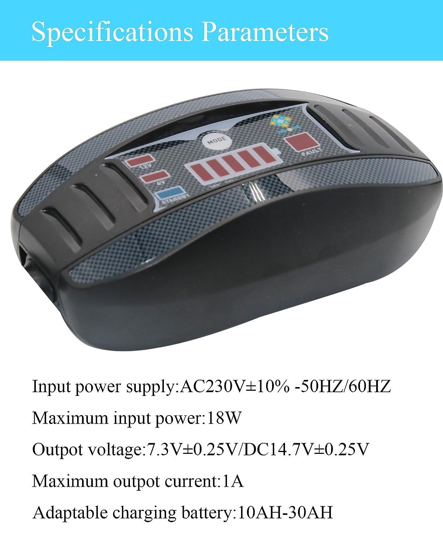 NoOne 6V / 12V 1 Amp cargador de batería inteligente ultra seguro y mantenedor con abrazaderas duraderas para automóviles, motocicletas, motos ...