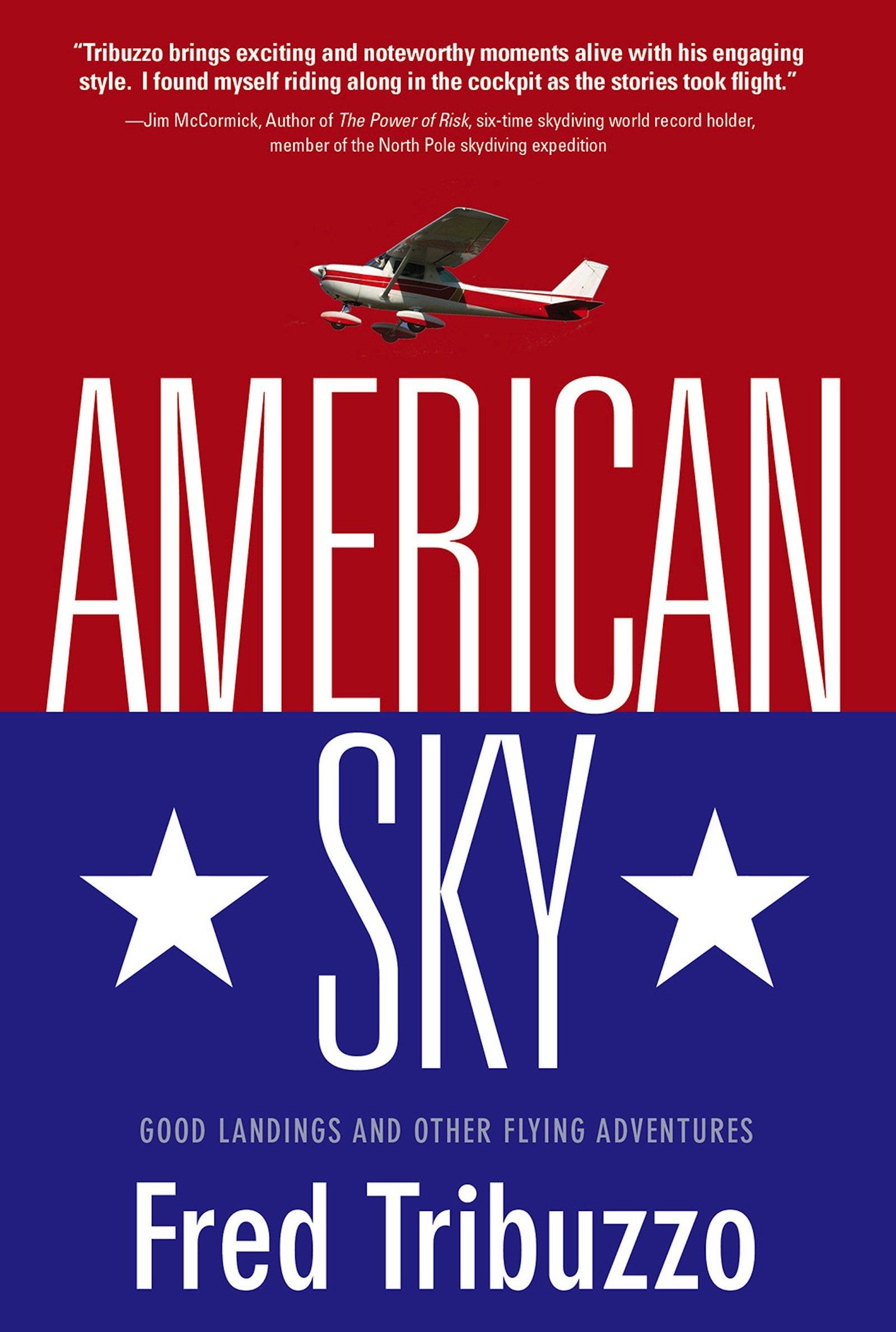 Download American Sky pdf epub