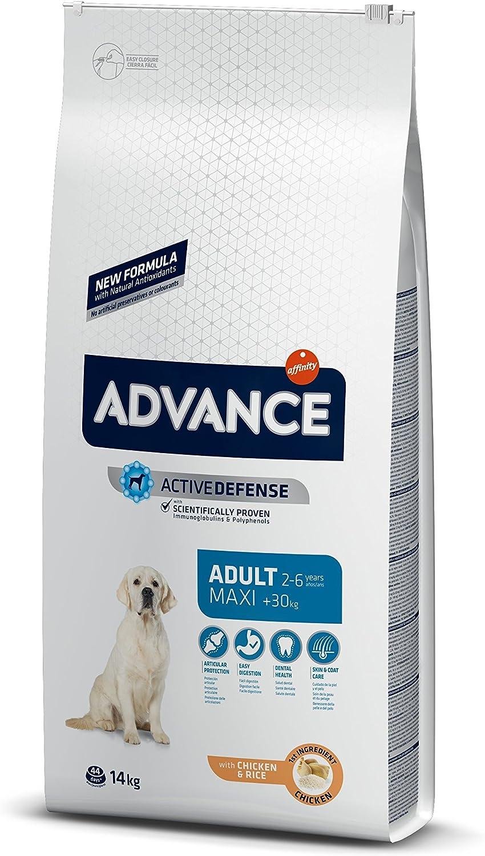 ADVANCE Maxi Adult - Pienso para Perros Adultos de Razas Grandes - 14 Kg