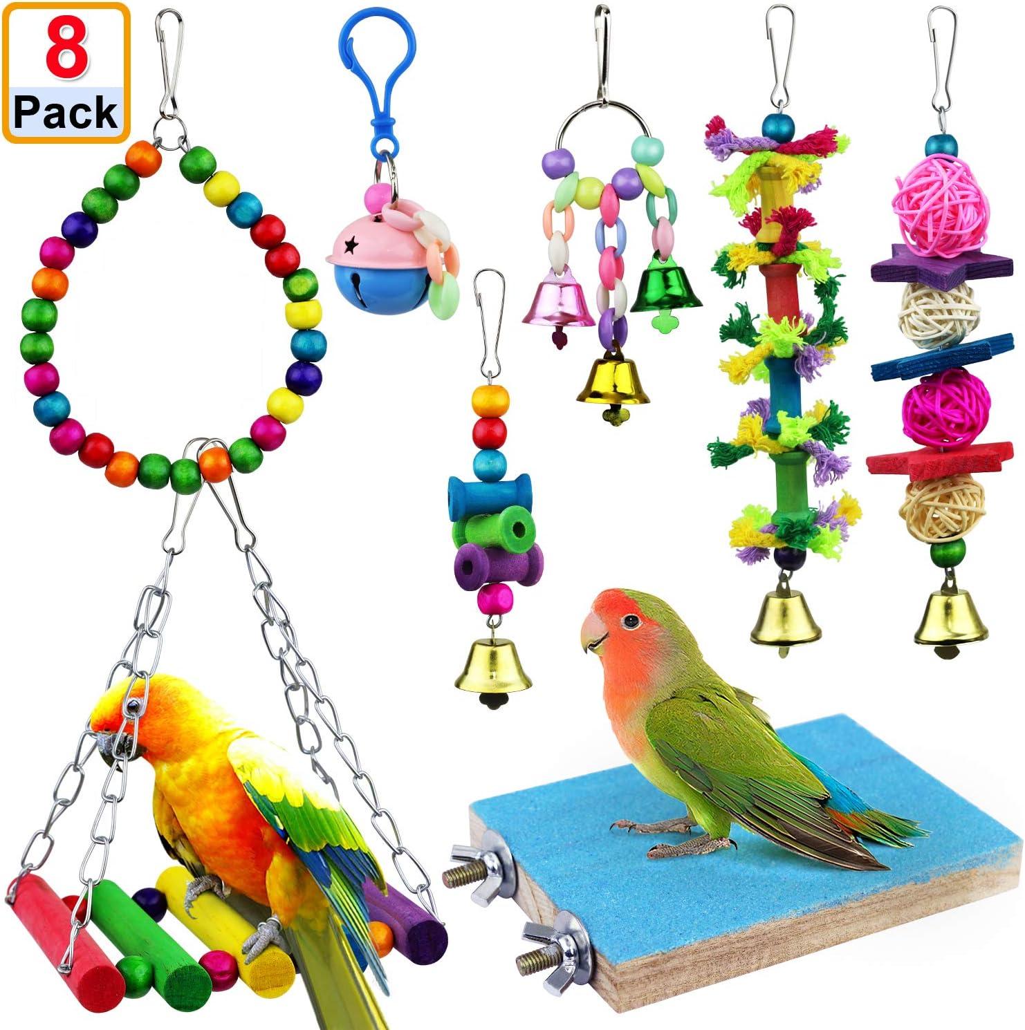 Eine Person, die benutzt Spielzeug für Vögel