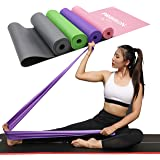 PROIRON Resistance Band Set Flat Stretch Bands Pilates Band Latex-Free for Yoga, Rehab, at-Home or The Gym Workouts…