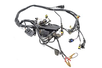 amazon com ducati 996 916 748 injection rear wiring harness wire rh amazon com Cloth Wire Loom Cloth Wire Loom