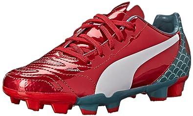 5d1f296b7 PUMA Evopower 4.2 Graphic FG JR Soccer Shoe (Little Kid Big Kid)