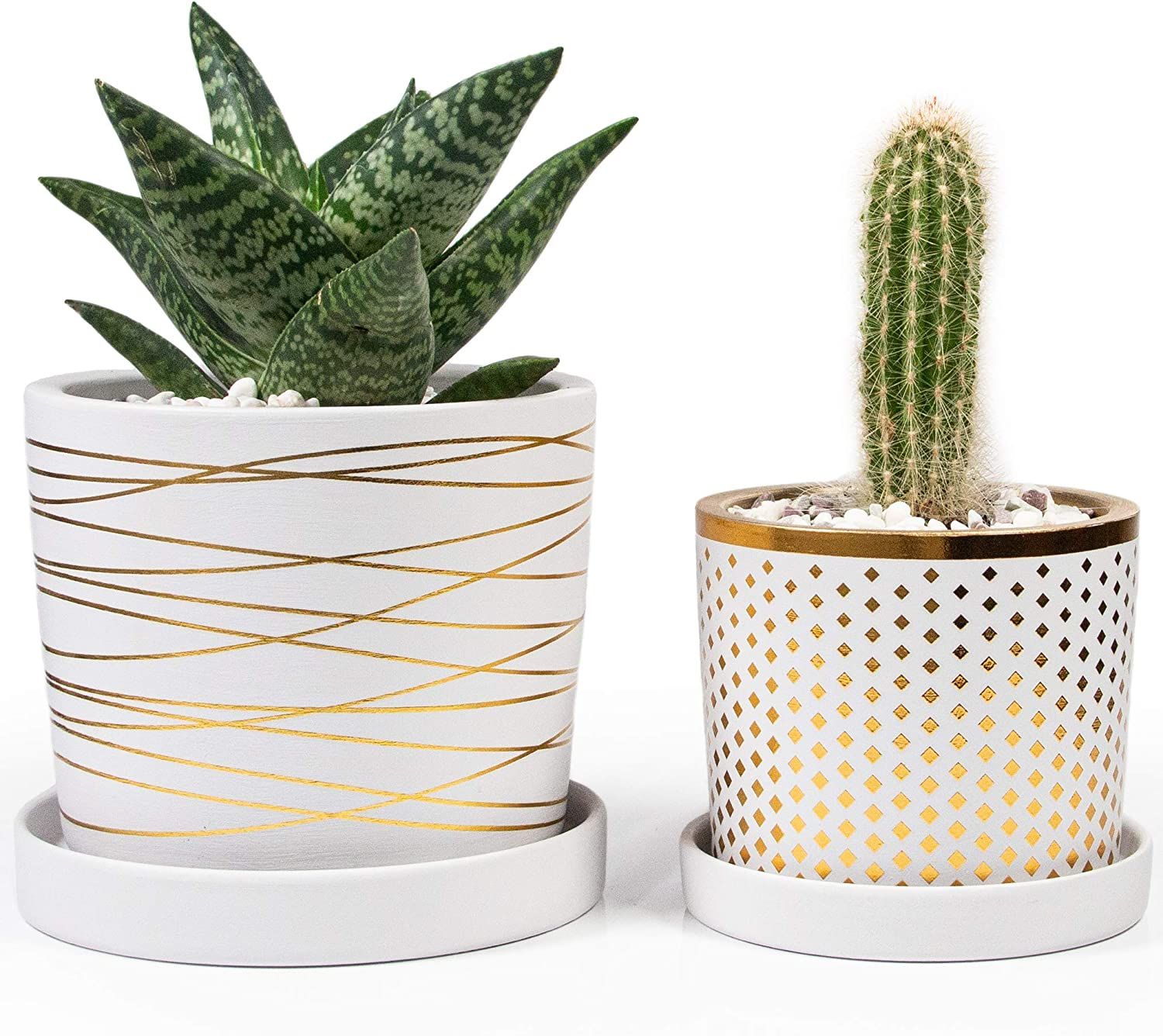 White and Gold Ceramic Pot Bundle - 6 Inch and 4.5 Inch pots - Includes Saucers, Drainage Plugs, and Decorative Pebbles