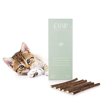 EVERANIMALS - Catnip | 6 Palitos De Hierba Gatera De Matatabi para Gatos | 100%