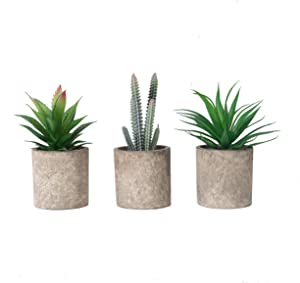 THE BLOOM TIMES Set of 3 Small Artificial Succulents Plants in Pots Mini Fake Succulent Plants Faux Grass Cactus Aloe Potted Plants for Home Bathroom Office Shelf Indoor Decor