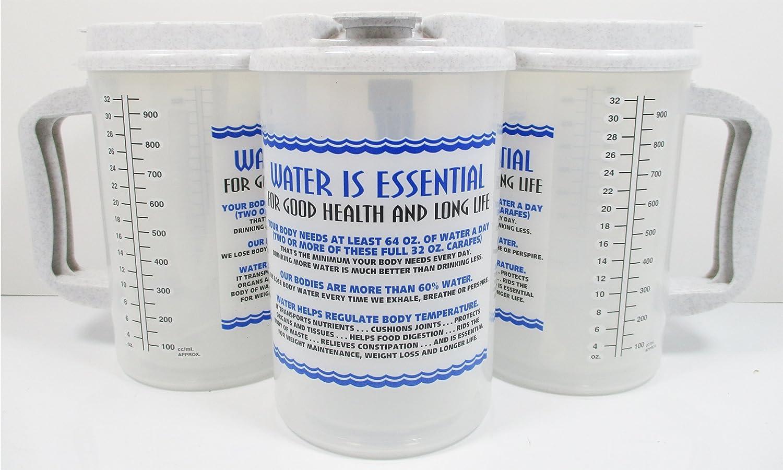 32オンス水Essentials Insulated Cold Drink病院マグ 32 Oz TM-32P Water Essentials B00L5O4NZ8  Granite Lid