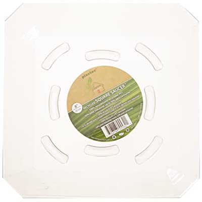 Plastec SQ08 8-Inch Square Saucer : Plant Saucers : Garden & Outdoor