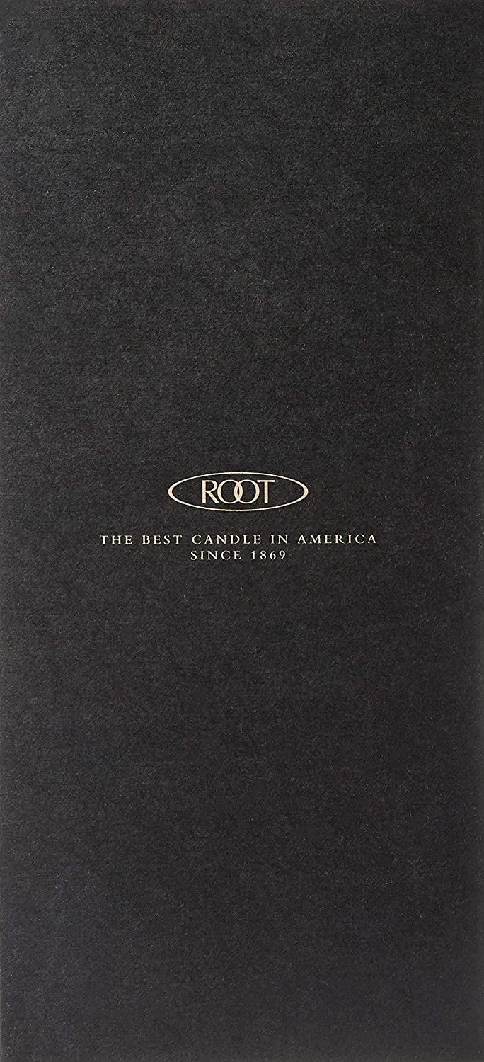 12-Count Root Candles Unscented Smooth Arista 12-Inch Dinner Candles Dark Olive