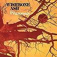 Pilgrimage - Cardboard Sleeve - High-Definition CD Deluxe Vinyl Replica + 1 Titre Bonus